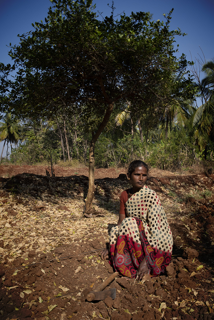 Bajgya, who has been practicing agroecology for three years now in Honnur, Karnataka.